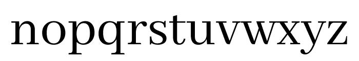 Abhaya Libre Regular Font LOWERCASE