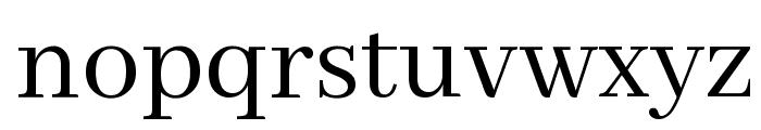 Abhaya Libre Font LOWERCASE