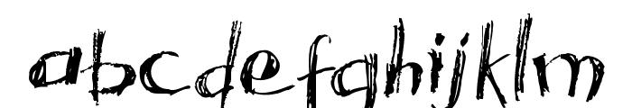 Acacia 23 Font LOWERCASE