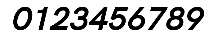 Acari Sans Bold Italic Font OTHER CHARS