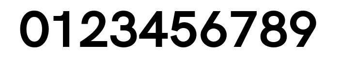 Acari Sans Bold Font OTHER CHARS