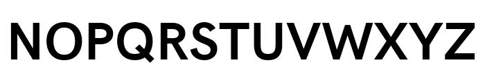 Acari Sans Bold Font UPPERCASE