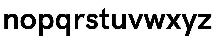 Acari Sans Bold Font LOWERCASE