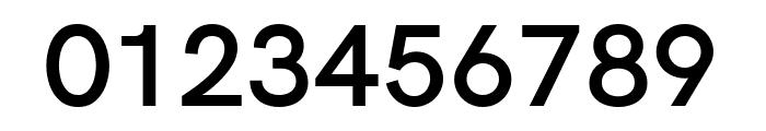 Acari Sans SemiBold Font OTHER CHARS