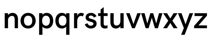 Acari Sans SemiBold Font LOWERCASE