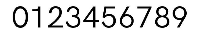 Acari Sans Font OTHER CHARS