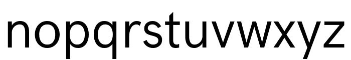 Acari Sans Font LOWERCASE