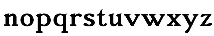 AccanthisADFStd-Bold Font LOWERCASE