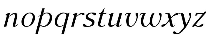 AccanthisADFStd-Italic Font LOWERCASE