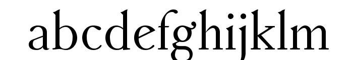 AccanthisADFStdNo2-Regular Font LOWERCASE