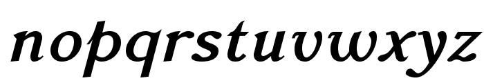 AccanthisADFStdNo3-BoldItalic Font LOWERCASE