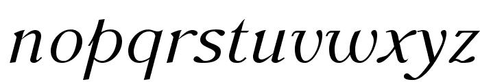 AccanthisADFStdNo3-Italic Font LOWERCASE
