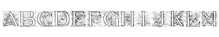 Acorn Initials Font UPPERCASE