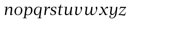 Acta Book Italic Font LOWERCASE