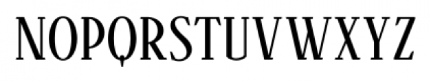 Aceserif Regular Font LOWERCASE