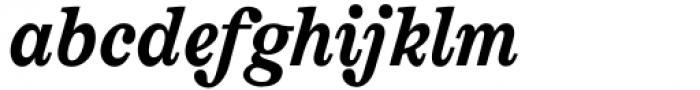 AC Honey Bee Serif Bold Italic Font LOWERCASE