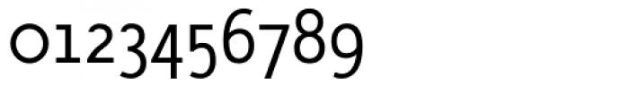 AcademiaTLight Roman Font OTHER CHARS