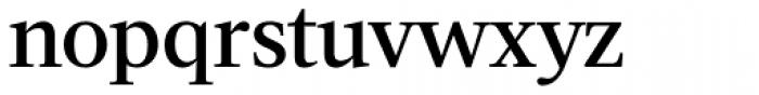 Acta Medium Font LOWERCASE