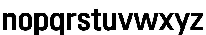 210 Computersetak Bold Font LOWERCASE