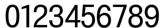 210 Computersetak Light Font OTHER CHARS
