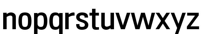 210 Computersetak Regular Font LOWERCASE
