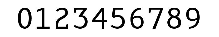 AdaptiveMono OT Regular Font OTHER CHARS