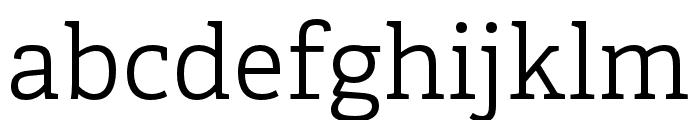 Adelle PE Light Font LOWERCASE