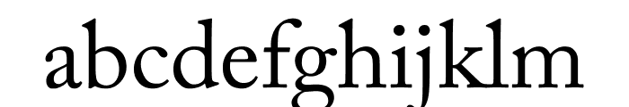 Adobe Caslon Pro Regular Font LOWERCASE