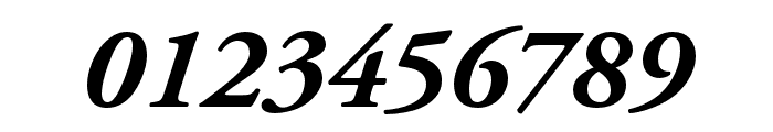 Adobe Garamond Pro Bold Italic Font OTHER CHARS