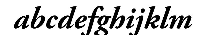 Adobe Garamond Pro Bold Italic Font LOWERCASE