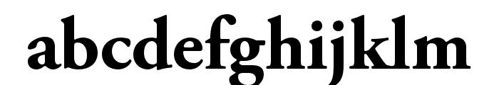 Adobe Garamond Pro Bold Font LOWERCASE