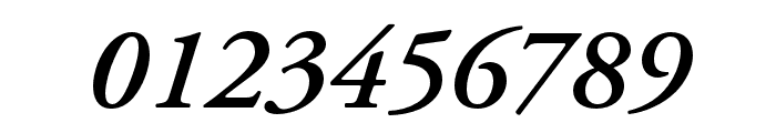 Adobe Garamond Pro Semibold Italic Font OTHER CHARS