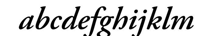 Adobe Garamond Pro Semibold Italic Font LOWERCASE