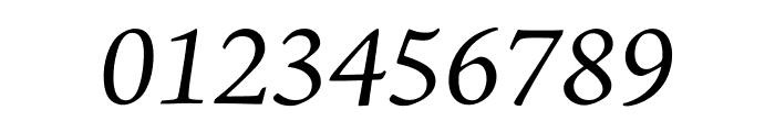 Adobe Jenson Pro Italic Subhead Font OTHER CHARS