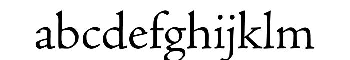 Adobe Jenson Pro Light Font LOWERCASE