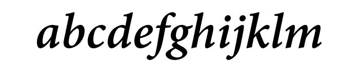 Adobe Kannada Bold Italic Font LOWERCASE