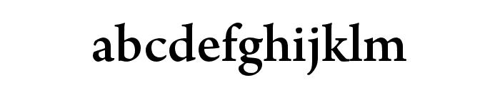 Adobe Naskh Medium Font LOWERCASE