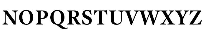 Adobe Text Pro Bold Font UPPERCASE