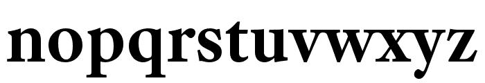 Adobe Text Pro Bold Font LOWERCASE