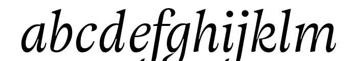 Adriane Text Italic Font LOWERCASE