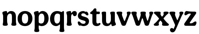 Aesthet Nova Bold Font LOWERCASE