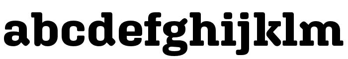 Aglet Slab Bold Font LOWERCASE