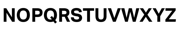 Aktiv Grotesk Bold Font UPPERCASE