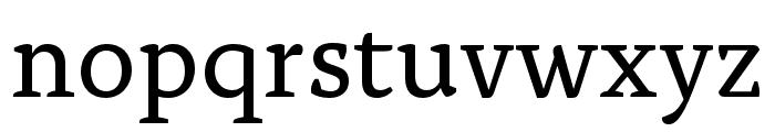 Alda OT CEV Regular Font LOWERCASE