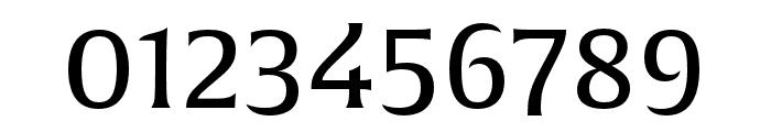 Alverata Irregular Regular Font OTHER CHARS