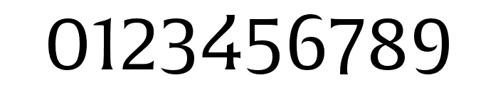 Alverata Light Italic Font OTHER CHARS