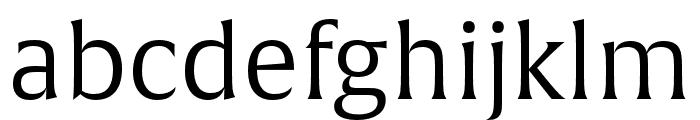 Alverata Light Italic Font LOWERCASE