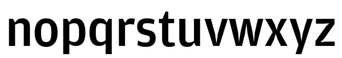 AmplitudeExtraComp Medium Font LOWERCASE