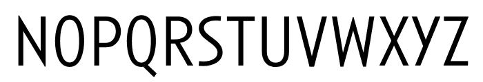 Anisette Std Petite Light Font LOWERCASE