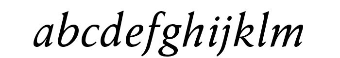 Anziano Pro Italic Font LOWERCASE